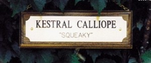 Stall Plate