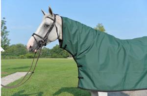 custom horse gear