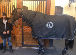 custom rain sheet by Equine Outfitters