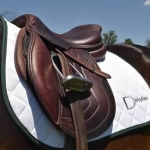 Horse & Pony Saddle Pads